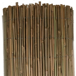 "¼""-½"" Bamboo Fence"